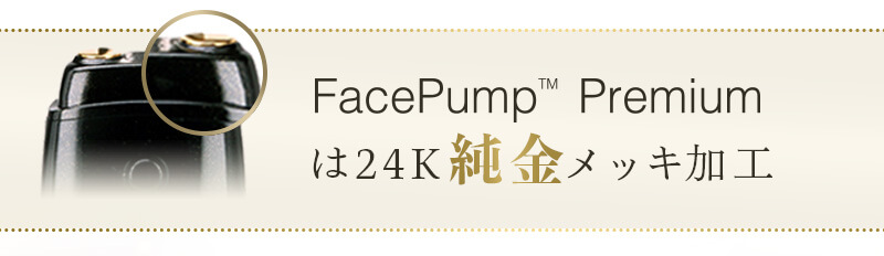 FacePump series