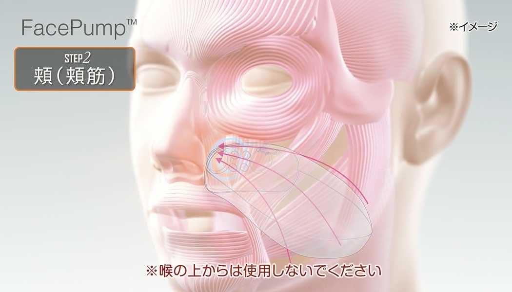 FacePump使用手順